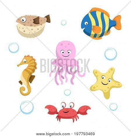 Vector cute different sea and ocean animals set. Isolated vector illustration. Colorful fish seahorse jellyfish starfish crab and blowfish.