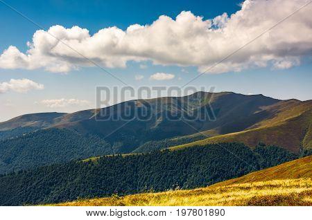 Carpathian Mountain Range In Summer