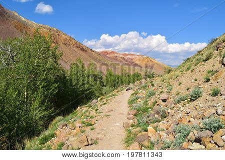 Canyon and path between multicolor hills of Altai mountains. Altay Republic Russia.