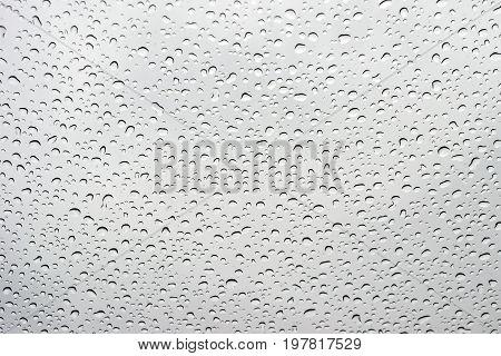 Drops of rain on a window glass.