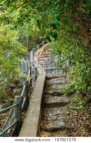 Nice Footpath Through The Jungle In Khao Sam Roi Yot National Park Thailand