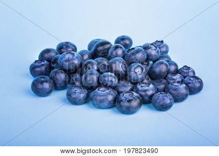 A pile of tasteful blueberries on a saturated blue background.  A close-up of refreshing and appetizing blueberries. Healthful ingredients for sweet summer fruit salads.