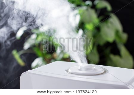 Vapor from humidifier in the room. Close up