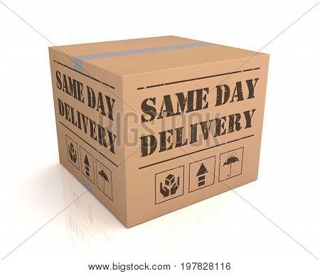 Same Day Delivery Cardboard Box Concept  3D Illustration