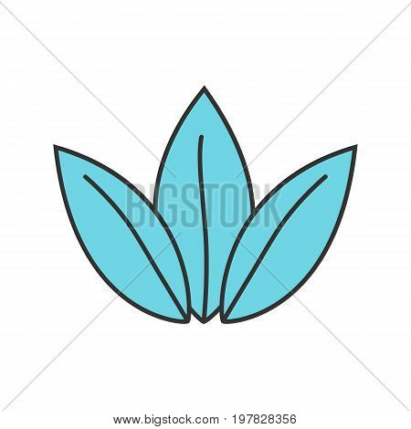 Apothecary herbs color icon. Alternative herbal medicine. Naturopathy. Isolated vector illustration