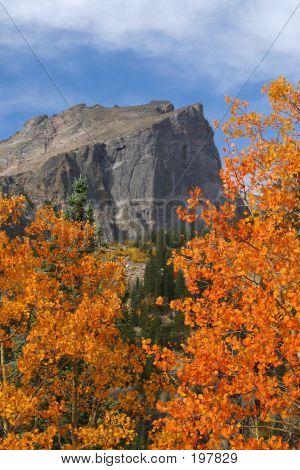Hallet Peak Fall - 28568