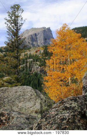 Autumn At Hallet Peak - 28557