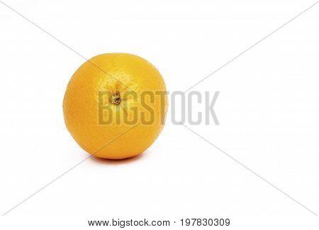 Orange Big Orange
