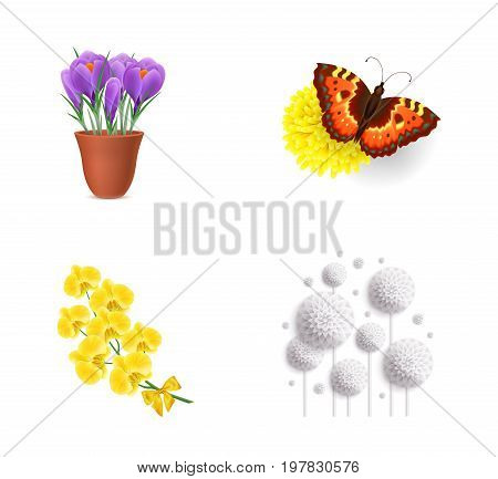 Flowers set. Potted irises Butterfly on dandelion Yellow orchid White dandelions