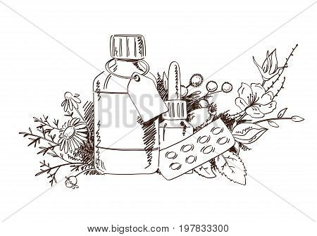 Hand draw medicinal plants and medicine. The concept of phytotherapy and alternative medicine.