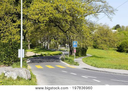 Pedestrian crossing painted yellow on a narrow and winding road along which a lush trees grows. It is visible somewhere in the outer district of Bern in Switzerland