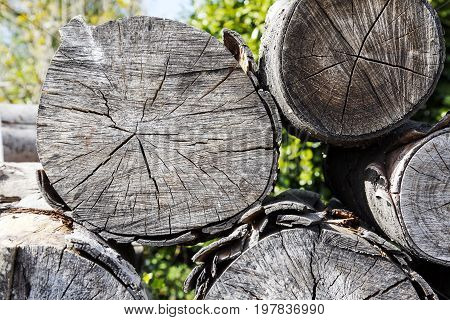 Firewood stacked and prepared in a pile of wooden logs