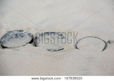 Wooden breakwaters are almost completely covered with sand on the beach in Kolobrzeg in Poland