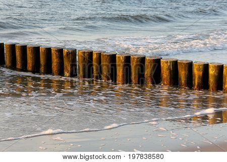 Wooden breakwaters in a light of setting sun can be seen at the edge of the beach in Kolobrzeg in Poland