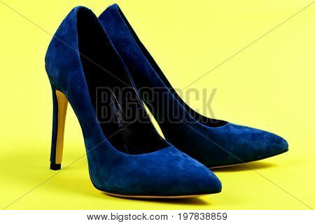 Female Formal Suede Footwear, Close Up