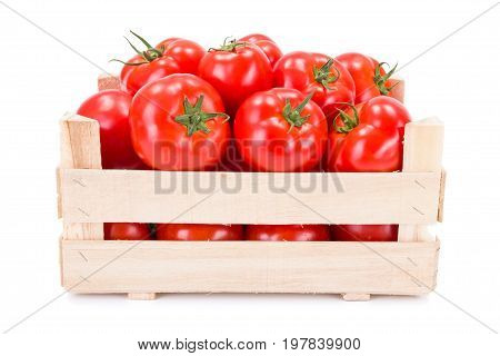 Tomatoes (solanum Lycopersicum) In Wooden Crate