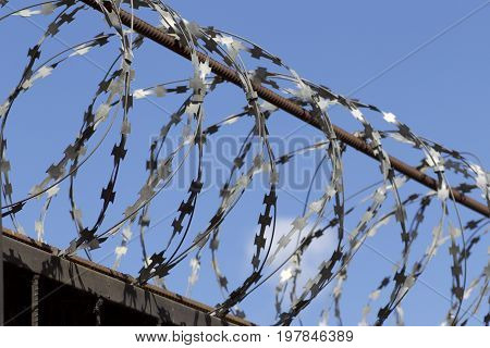 Barbed Wire Wound Top Image & Photo (Free Trial) | Bigstock