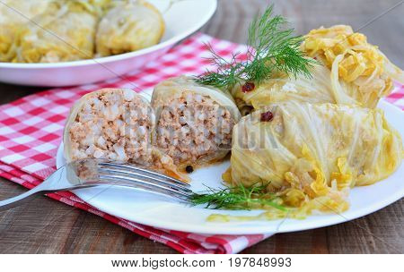 Cabbage rolls with minced meat and rice filling sarmale on white plate.