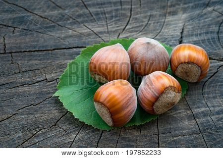 ripe brown hazelnuts on the wooden background. Close up.