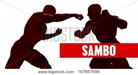 Sambo Class with Silhouette of Two Men Fighting 3D Illustration Render
