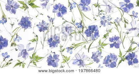 purple flower petals and leaves background