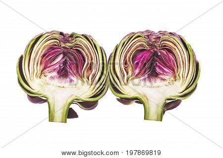 Slice artichoke isolated on the white background.