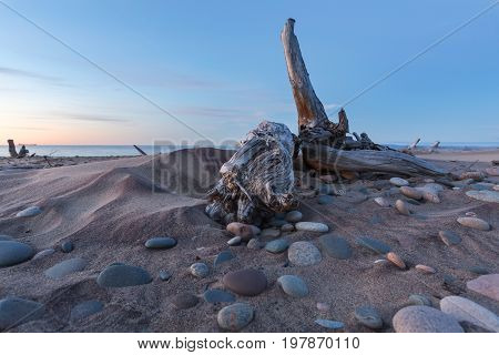 Whitefish Point - Driftwood and Lake Superior stones litter Whitefish Point beach in the Upper Peninsula of Michigan at sunset