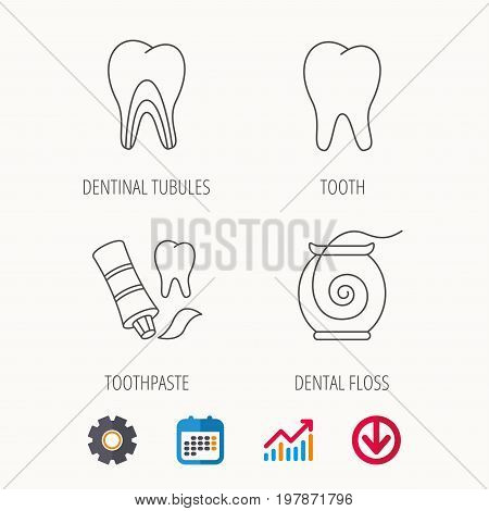 Tooth, dentinal tubules and dental floss icons. Toothpaste linear sign. Calendar, Graph chart and Cogwheel signs. Download colored web icon. Vector