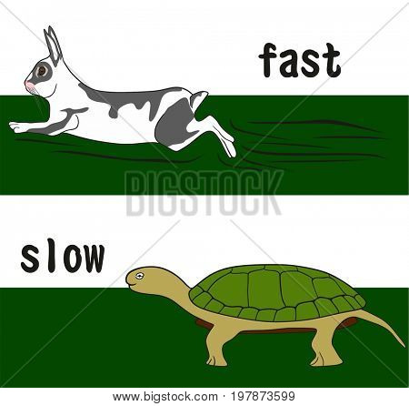 Fast and Slow Opposition word Concept for education conceptual drawing showing running rabbit and walking turtle