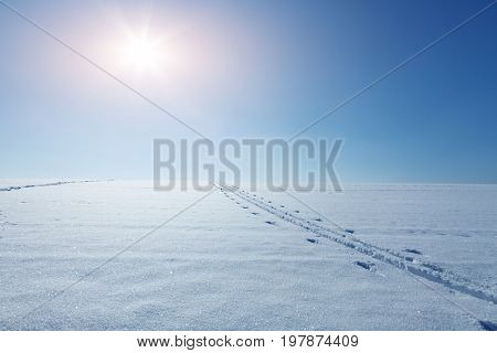 Snowy field on a sunny day with traces of a ski