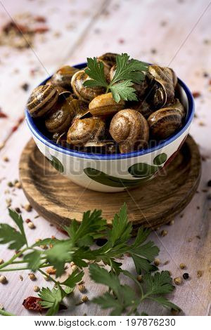 a ceramic bowl with spanish caracoles en salsa, cooked snails in sauce, on a rustic wooden table
