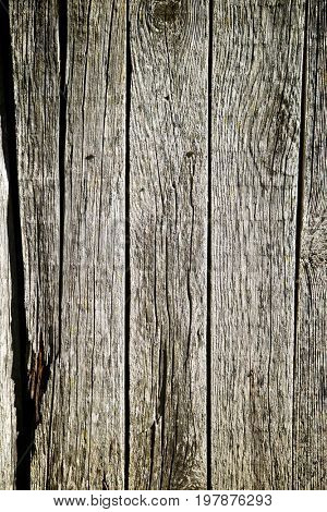 Wood background close up at high resolution