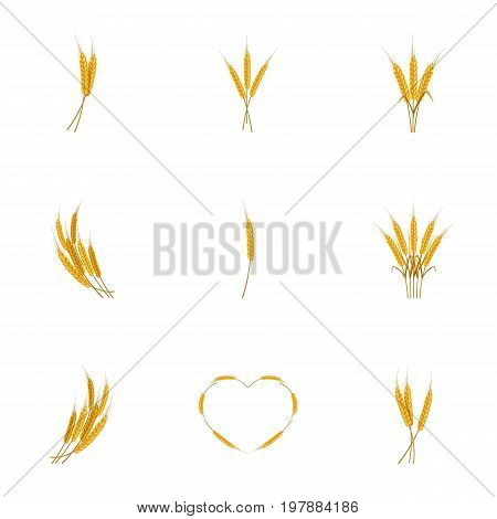 Ears of wheat bread icons set. Cartoon set of 9 ears of wheat bread vector icons for web isolated on white background