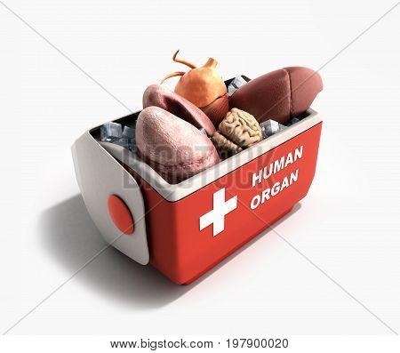 Organ Transportation Concept Open Human Organ Refrigerator Box Red 3D Render On White Background