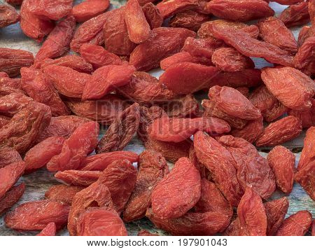 Detailed many Goji berries (Lycium barbarum) background. Goji. Macro shot