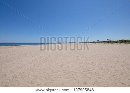 Landscape Pine Beach With Grao Of Castellon In Horizon