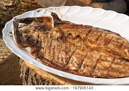 Close Up View Of Fresh Fish With Sauce Cooked On An Open Flame Grill  On Big White Plate..