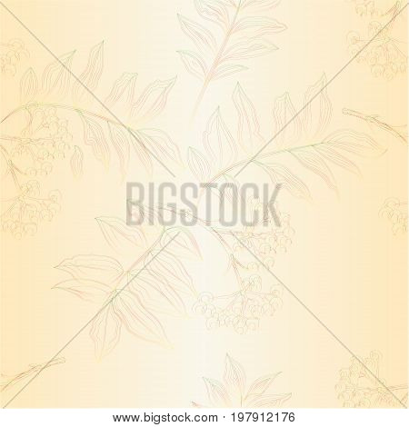 Seamless texture contour twig rowanberry with leaves and berries autumn vintage vector editable illustration hand draw