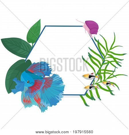 Vector border circle frame with colorful fishes