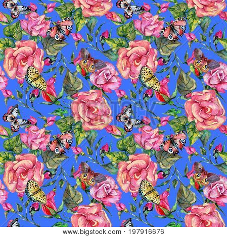 Wildflower rosa flower  pattern in a watercolor style. Full name of the plant: rosa. Aquarelle wild flower for background, texture, wrapper pattern, frame or border.