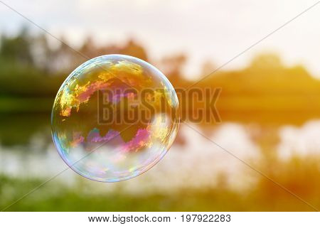 Soap Bubbles On The Banks Of The River Fly Downwind. The Concept Of Lightness And Airiness, Sunlight
