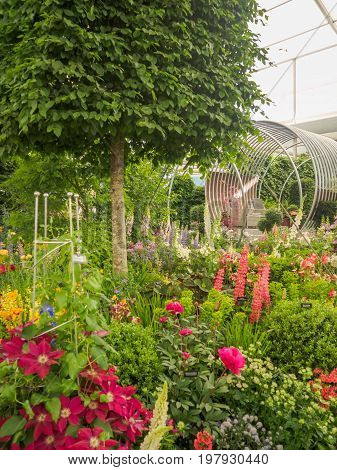 LONDON UK - MAY 25 2017: RHS Chelsea Flower Show 2017. The world's most prestigious flower show displaying the best in garden design.