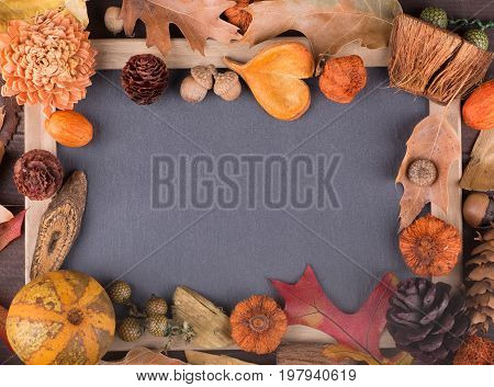 Colorful autumn decor surroundind blank black board