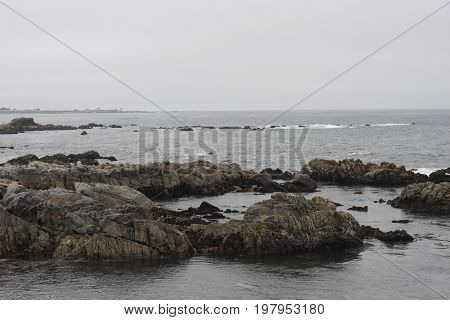 This is an image of volcanic rocks taken at low tide at Asilomar State Beach in Pacific Grove, California.