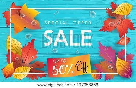 Hello Autumn Sales banner, Sale Vector illustration. Fall sales season voucher with realistic drawing maple leaves, leaf fall, wood texture, water drops. Thanksgiving Holiday decoration.