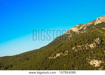 Mountain With Green Trees Against The Blue Clear Sky, Tarragona, Catalunya, Spain. Copy Space For Te