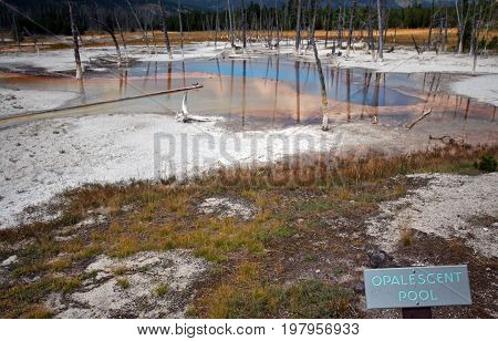 Opalescent Pool hot spring in the Black Sand Geyser Basin in Yellowstone National Park in Wyoming USA