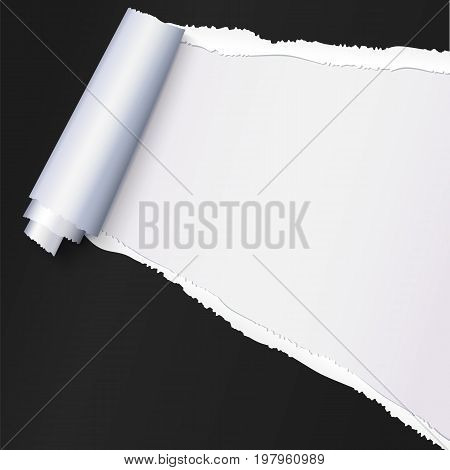 Realistic black torn open paper with space for text on white background, holes in paper. Torn strip of paper with uneven, torn edges. Coiling torn strip of paper