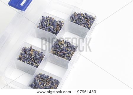 Dried Flowers Of Lavender. The Cells Of The Container Are Filled With Dried Lavender Inflorescences