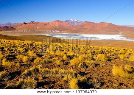 Landscape of Cordillera de Lipez with high mountains and Laguna Morejon, Andean Altiplano, Bolivia.